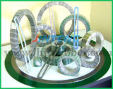 China Good Supplier Spiral Wound Gasket