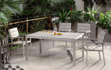 Garden Furniture Brushed Aluminum Dining Set Polywood Table and Chair Patio Furniture (BZ-P047)