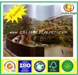 Chenming Packing Art Paper