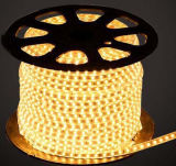 Ce EMC LVD RoHS Two Years Warranty, White LED Flexible Strip Light LED Rope (SMD3528-60)