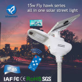 Bluesmart All in One Solar Street Lights Garden Products with LiFePO4 Lithium Battery