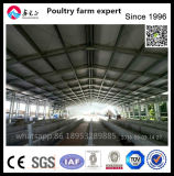 Steel Structure Design Layer Chicken House