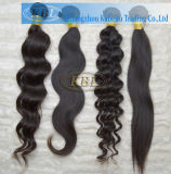 2013 Kbl Most Popular Peruvian Curly Hair