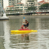 Hot Sale PE Water Bike\ Water Bicycle for Fitness