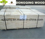 Bleached White Poplar Lvb & LVL Plywood