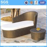 Outdoor Patio Pool Side Lounge Sofa Wicker Furniture