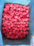 Frozen Raspberry with High Quality