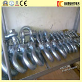 G80 Factory Price U Shackle, Stainless Steel Shackle