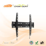 Wholesale China Factory 400X400mm Fixed TV Wall Mount TV Bracket (CT-PLB-E613)