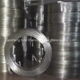 ASTM 310 Stainless Steel Coiled Tube