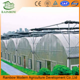 Agricultural Greenhouse Strawberry Greenhouse Outside Shading System