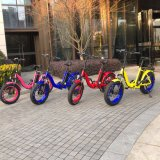 20inch fat tire folding e bike