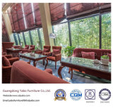 Modern Hotel Furniture for Leisure Restaurant Furniture Set (YB-WS-83)