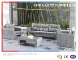 New Design Outdoor/Patio Furniture Sofa Set (TG-027)