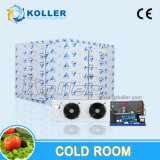 Big Capacity Freezer Room with Bock Compressor