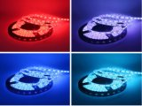 Waterproof LED Tape Light Kit