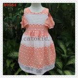 Fancy Fashion Dress Costumes Kids Commuion Dress Girls Clothes