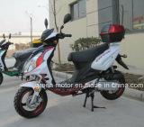 125cc150cc/50cc Gas Scooter, Scooter (Voletta)