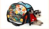 Astronaut Capsule Pet Breathable Carrier Travel Bag