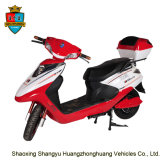 Classic Hot Sell 800W 60V 20ah OEM Logo Electric Motorcycle