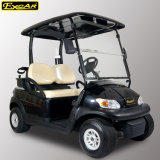 2 Seater Electric Golf Buggy