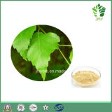 High Quality Flavonoides 5% Birch Leaf Extract