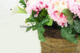 High Quality Outdoor Garden Planter for Nursery
