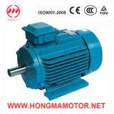 NEMA Standard High Efficiency Motors (447TS-2-200HP)