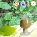 Quercetin Dihydrate Manufacturer Supply Good Price Products