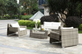 Stackable Rattan Furniture/Aluminum Furniture/Rattan Sofa (BZ-SF068)