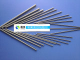 Professional Factory Fine Finish Cemented Carbide Threaded Rods