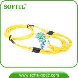 12 Core Sc/APC Green Connector Fiber Optic Fanout Bundle Pigtail