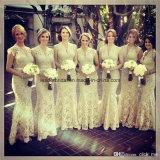 V-Neck Evening Gowns Lace Mermaid Ladies Bridesmaid Dresses Z5084