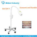 Distribute Economic Teeth Whitening Dental LED Bleaching Lamp
