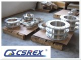 Sand Iron Casting Products OEM Cast Iron Flange