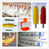 2015 Hot Sale Poultry Farming Equipment for Chicken Rearing
