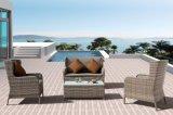 PE Rattan Outdoor Patio Wicker Sofa Lancome Lounge Set Furniture J (619)