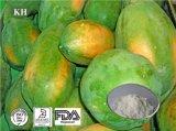 100% Pure Papaya Extract Fruits Juice Powder