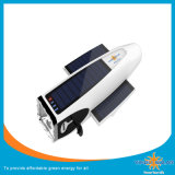 Rechargeable Solar Torch Light/Pocket Lamp