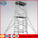 Double Width Scaffolding Building Construction 5m Telescopic Vertical Ladder