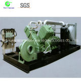 CNG Gas Station Natural Gas Piston Compressor