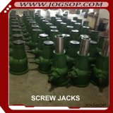 2017 Wholesale High Quality Screw Jack for Truck