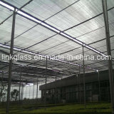 Agricultural New PE Shade Net with UV (YHZ-SDN13)