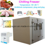 Chilling Freezer Room -20degree to Store Beef and Chicken