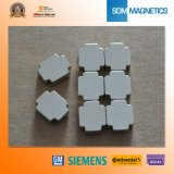 Special Shape Super Magnetic Force N52 Neo Permanent Magnet