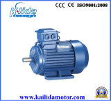 Y2 Series Three-Phase Induction Motor