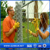 Galvanized and PVC Coated Security Chain Link Mesh Fence on Sale