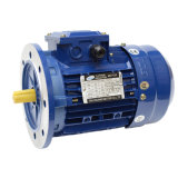 220V 380V Three Phase AC Asynchronous Motor