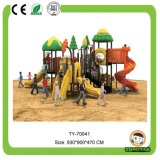 Popular Outdoor Playground Equipment (TY-70041)