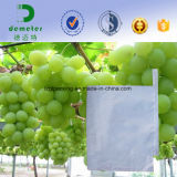 Fruit Use and Biodegradable Feature Grape Protection Grow Paper Covering Bag